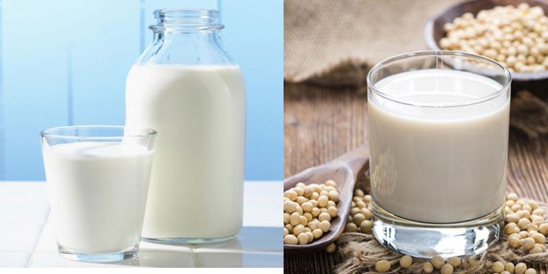 sữa đậu nành tươi