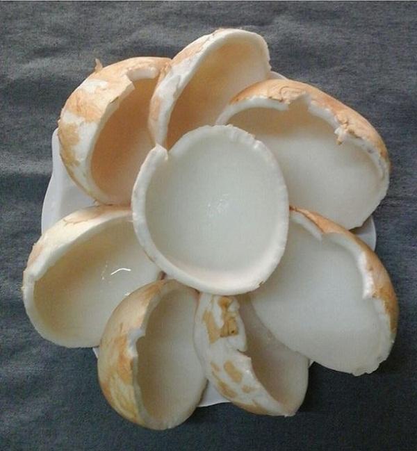 bổ dừa