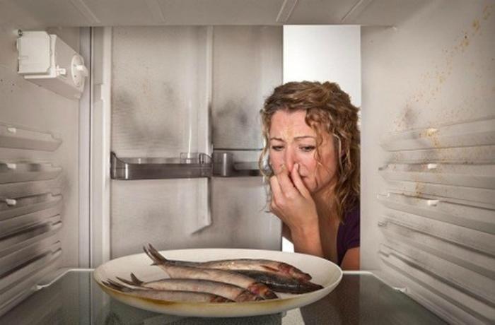 thực phẩm hỏng khi bảo quản không tốt