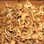 Đâu là kỹ thuật sấy nấm khô nhanh và giữ chất lượng tốt nhất?