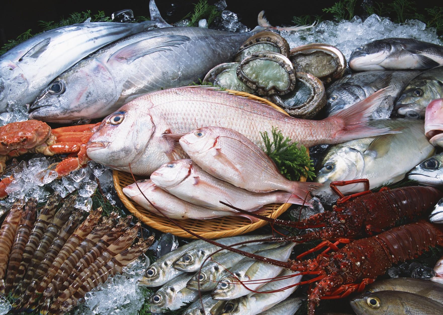 Thực phẩm sau khi dùng máy rửa cá băng chuyền