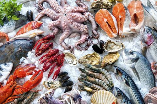 Lồng rửa cá công nghiệp